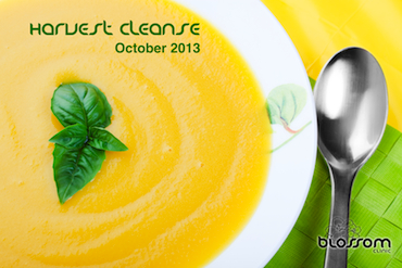 The Harvest Cleanse package includes a group class, 2 naturopathic visits and 2 acupuncture visits with a 25% discount.