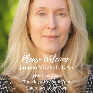 blossom clinic acupuncturist Janene Mitchell acupuncture portland