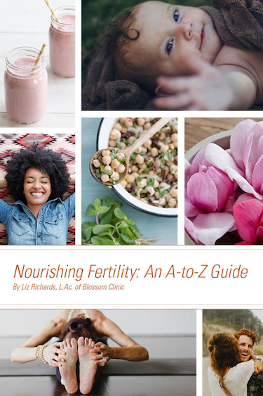 Sign up in advance to receive a free copy of Nourishing Fertility: An A-to-Z Guide! This 40 page book is filled with great information.